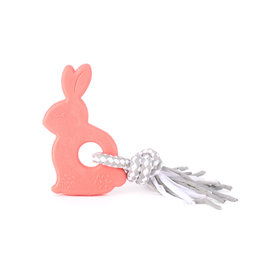 Zippy Paws Bonnie the Bunny Teetherz Dog Toy