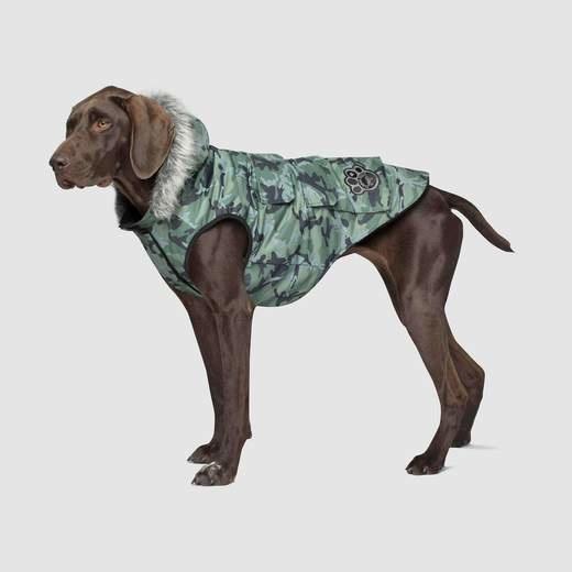 Canada Pooch Camo Everest Explorer Dog Jacket