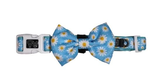 Big and Little Dogs Lazy Daisy Dog Collar and Bow Tie