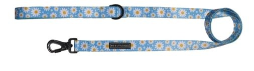 Big and Little Dogs Lazy Daisy 5ft Dog Leash