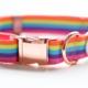 Ripley & Rue Rue's Rainbow Remix Collar
