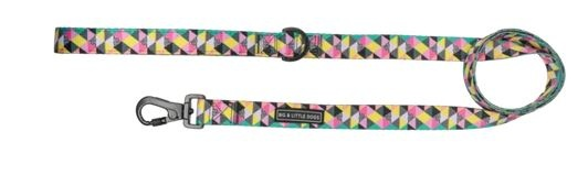 Big and Little Dogs All-Sorts 5 ft Dog Leash