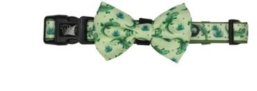Big and Little Dogs Crikey Croc Dog Collar & Bow Tie