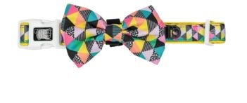 Big and Little Dogs All-Sorts Dog Collar & Bow Tie
