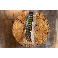 Lodgepole Outdoors Full Length Barred Turkey Feather