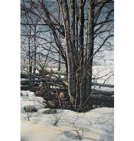 Reigo Late Winter by Artis Reigo