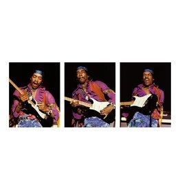 Knight Hendrix Triplet by Robert Knight
