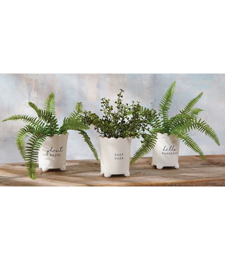 Mud Pie Scalloped Ceramic Sentiment Pots