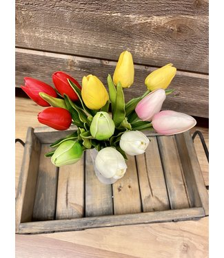 Real Touch Tulip