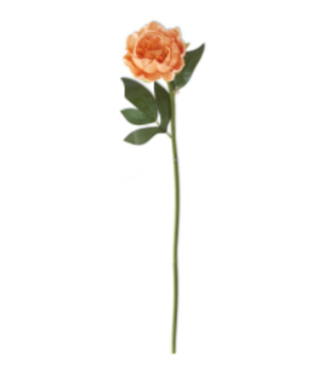 20 Inch Real Touch Peony Stem Peach