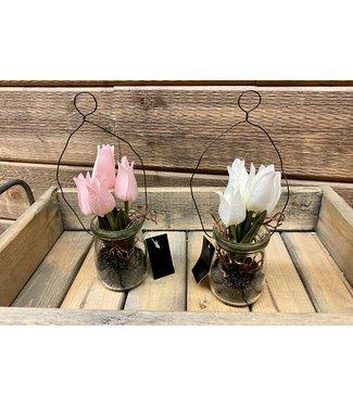 "8"" White Mini Tulip in Glass Bottle with Black Stone"