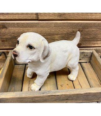 """Labrador Pup 8""""H"""