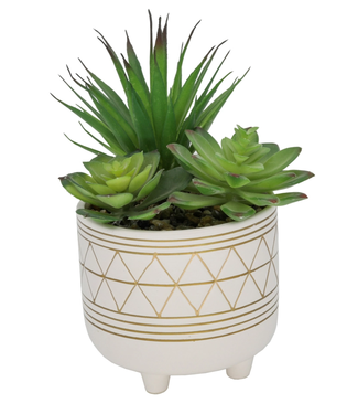 "Flora Bunda 5"" Geo Gold Leg Ceramic Artificial succulent"