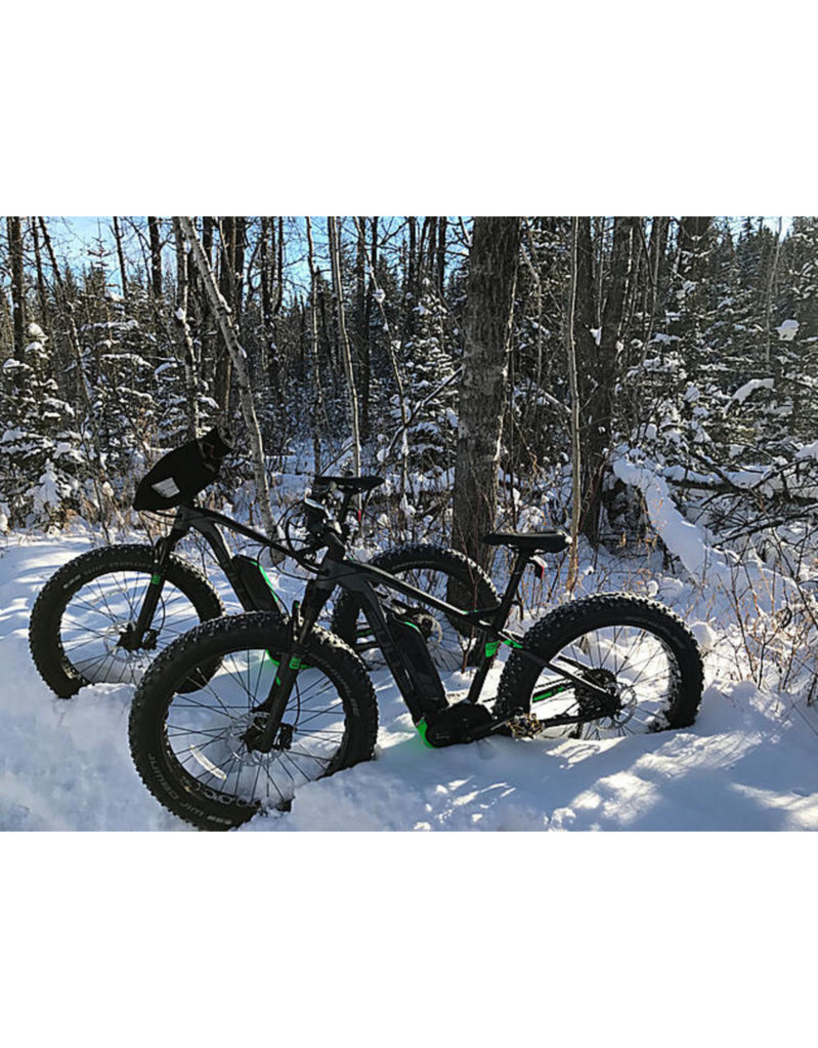 BULLS BULLS MONSTER E FS ELECTRIC FAT BIKE