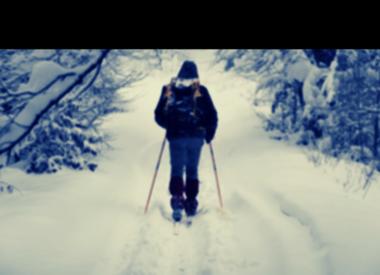 Skis de fond usagés