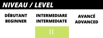 Intermediate skier leve