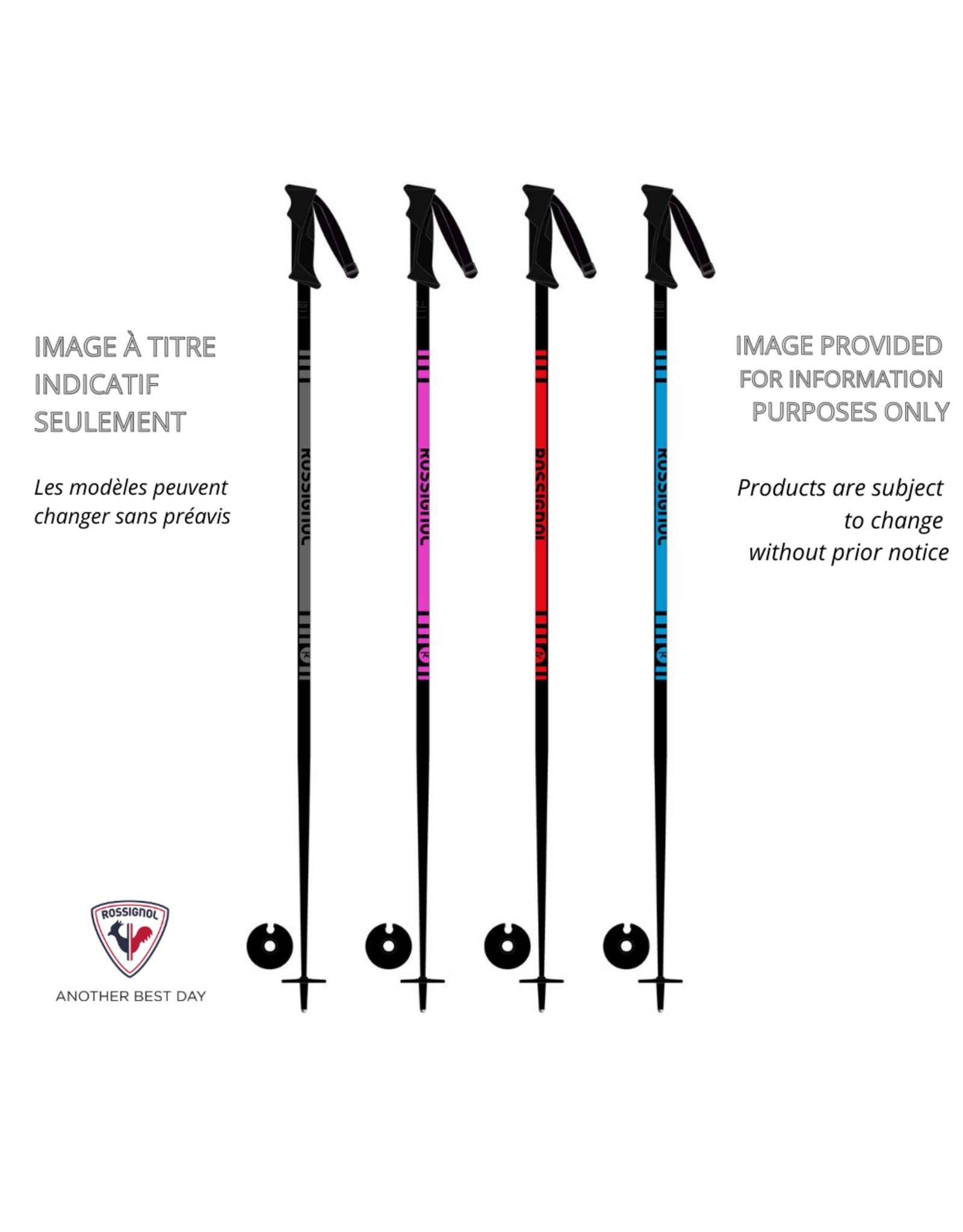 SEASON ALPINE SKI POLE RENTAL (junior)
