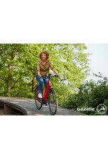 GAZELLE GAZELLE ULTIMATE T10 LOW-STEP E-BIKE RED
