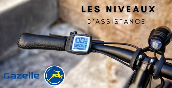Les niveaux d'assistance d'un vélo électrique