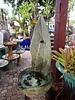 CARVED & CAST STONE FOUNTAINS STANDING LEAF FOUNTAIN