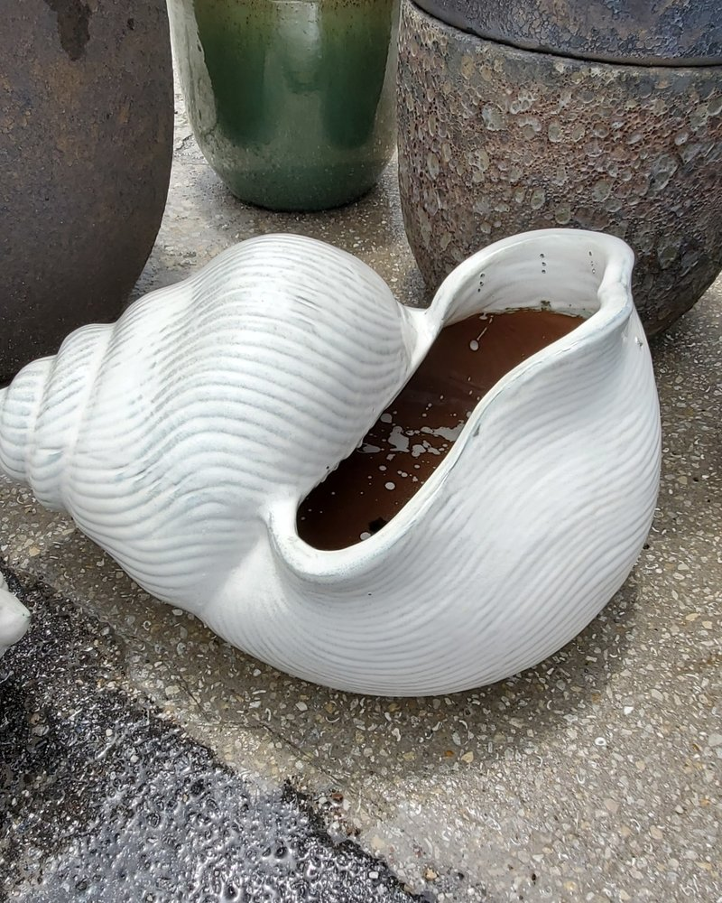 HIGH FIRED CERAMIC LB SHELL PLANTER LG