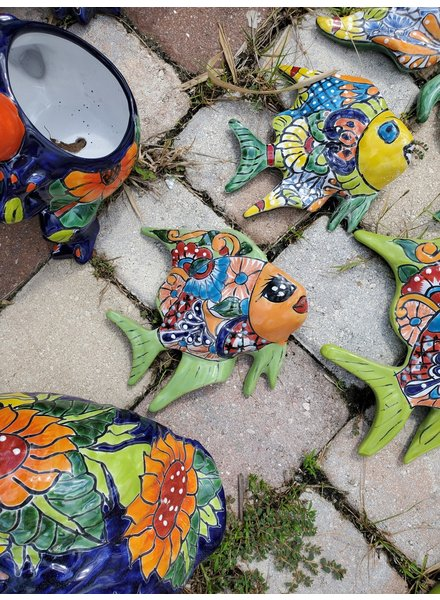 TALAVERA ANGEL FISH TALAVERA SM