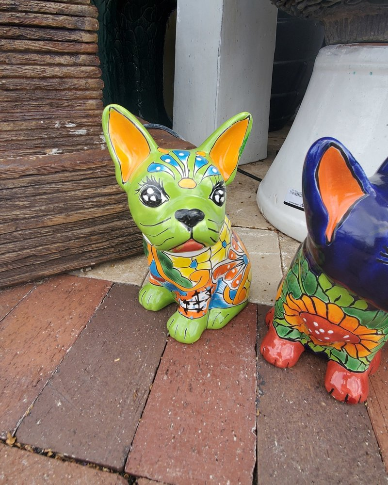 TALAVERA FRENCH BULLDOG