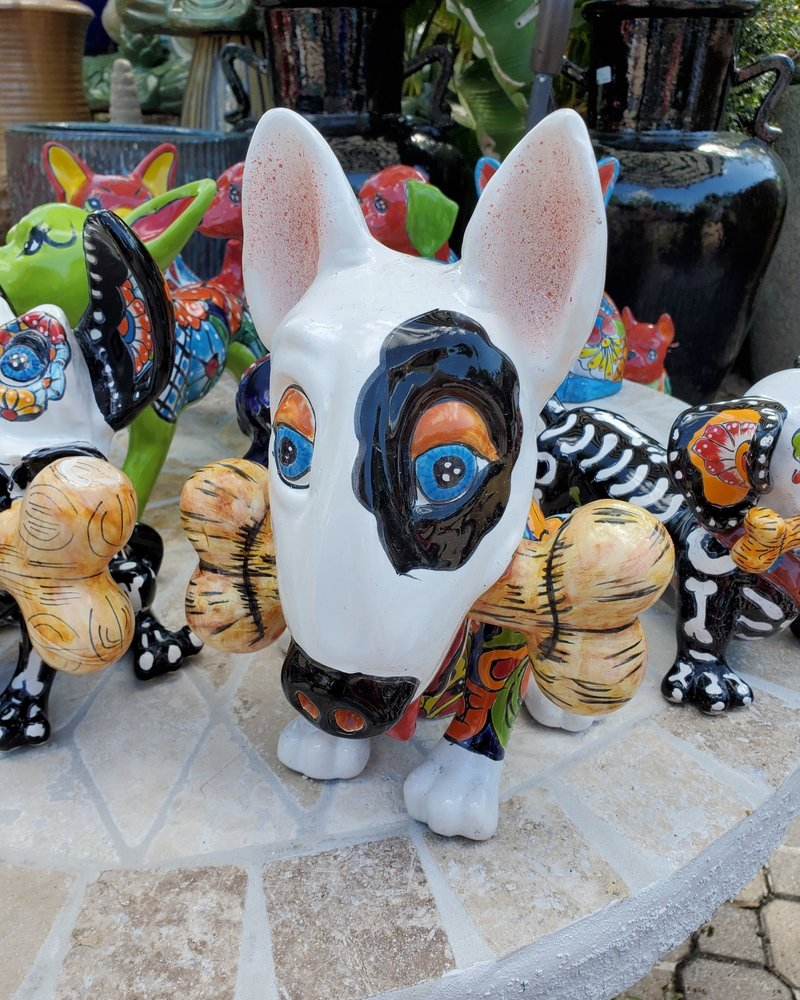 TALAVERA BULL TERRIER DOG