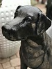 "CAST STONE 31"" LABRADOR RETRIEVER"