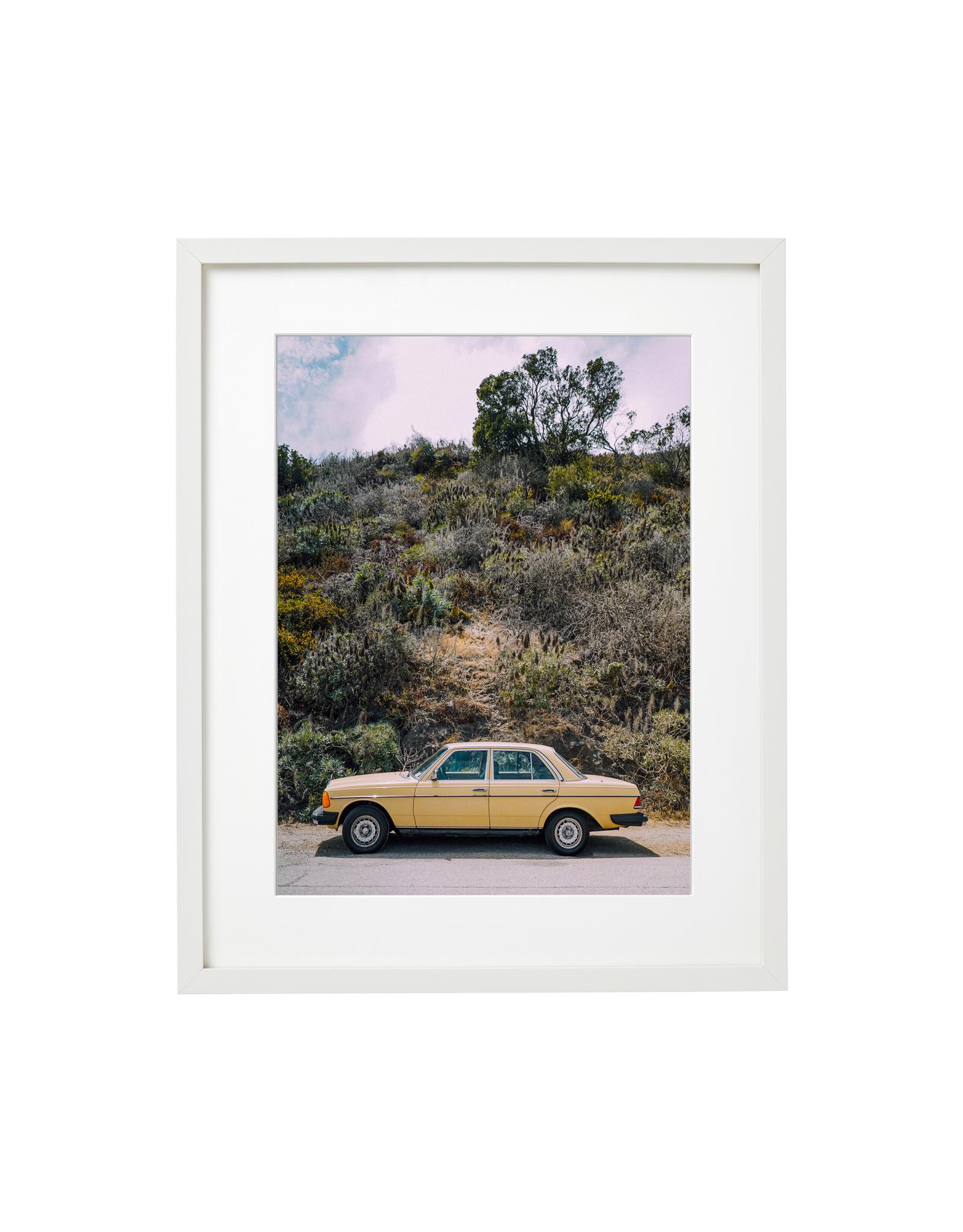 California Gold - Félix Patenaude