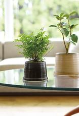 Kinto - Pot à plante 110mm - Beige