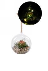Boule en verre illuminée avec cactus