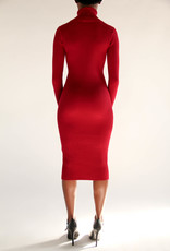 BellaNiecele Rib Knit Turtle Neck Sweater Dress