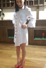 Lantern Sleave button Down Dress
