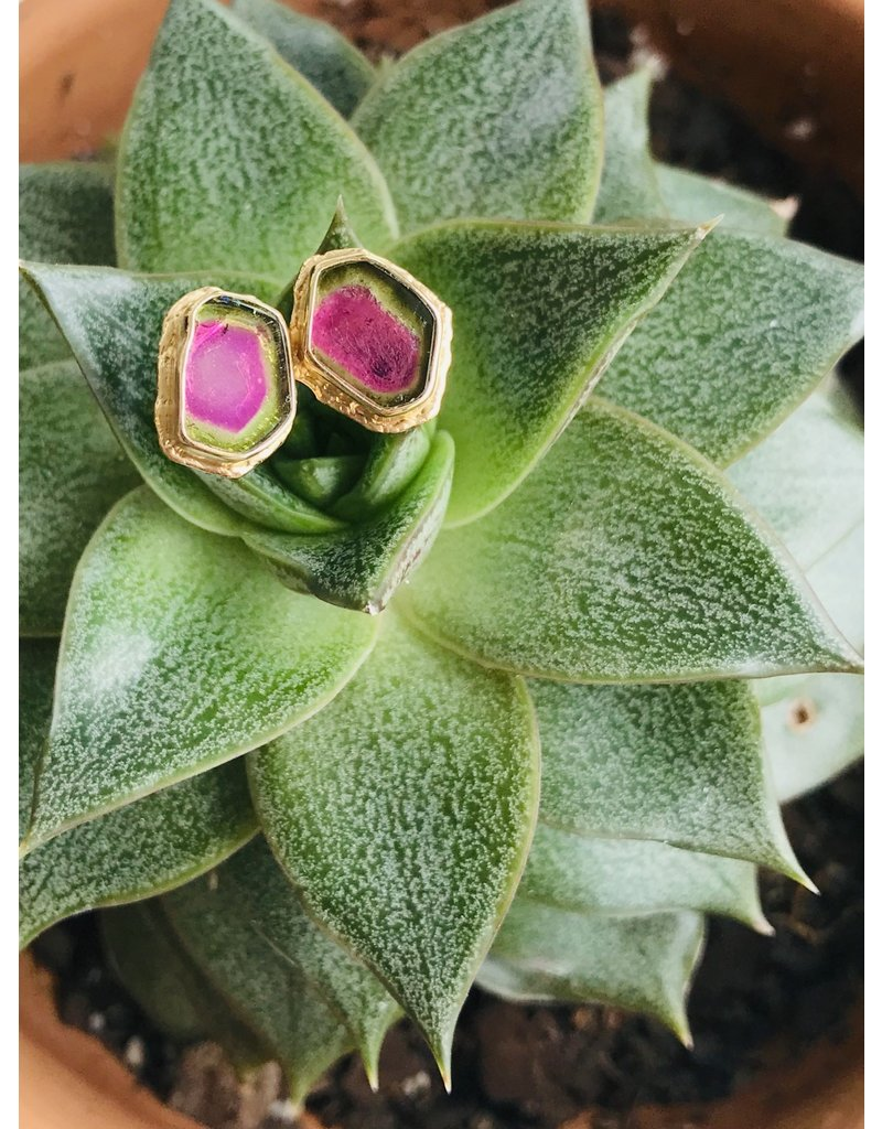 JAMIE JOSEPH Watermelon Tourmaline Post Earrings