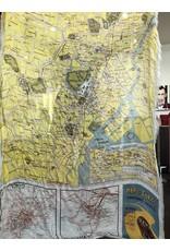 FRANCO FERRARI Rieti Stole Map of Tokyo