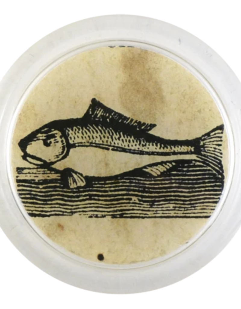 "JOHN DERIAN Iconic - Fish 4"" Coaster"