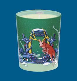 DIPTYQUE Holiday Diptyque - Sapin de Nuit (Moonlit Fir) Candle 6.5