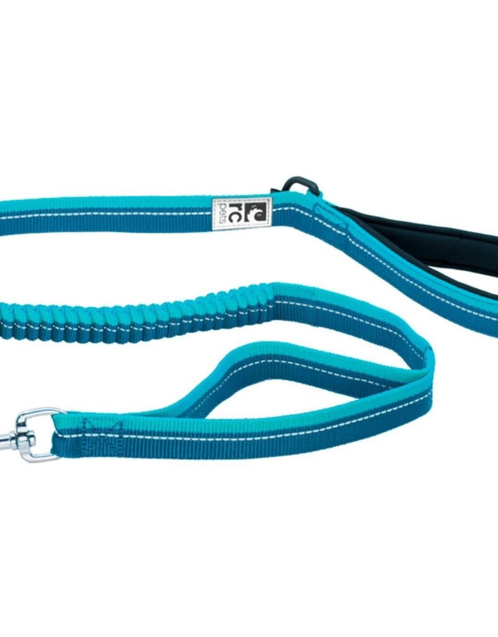 Bungee Traffic Leash
