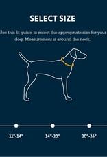 Front Range Dog Collar