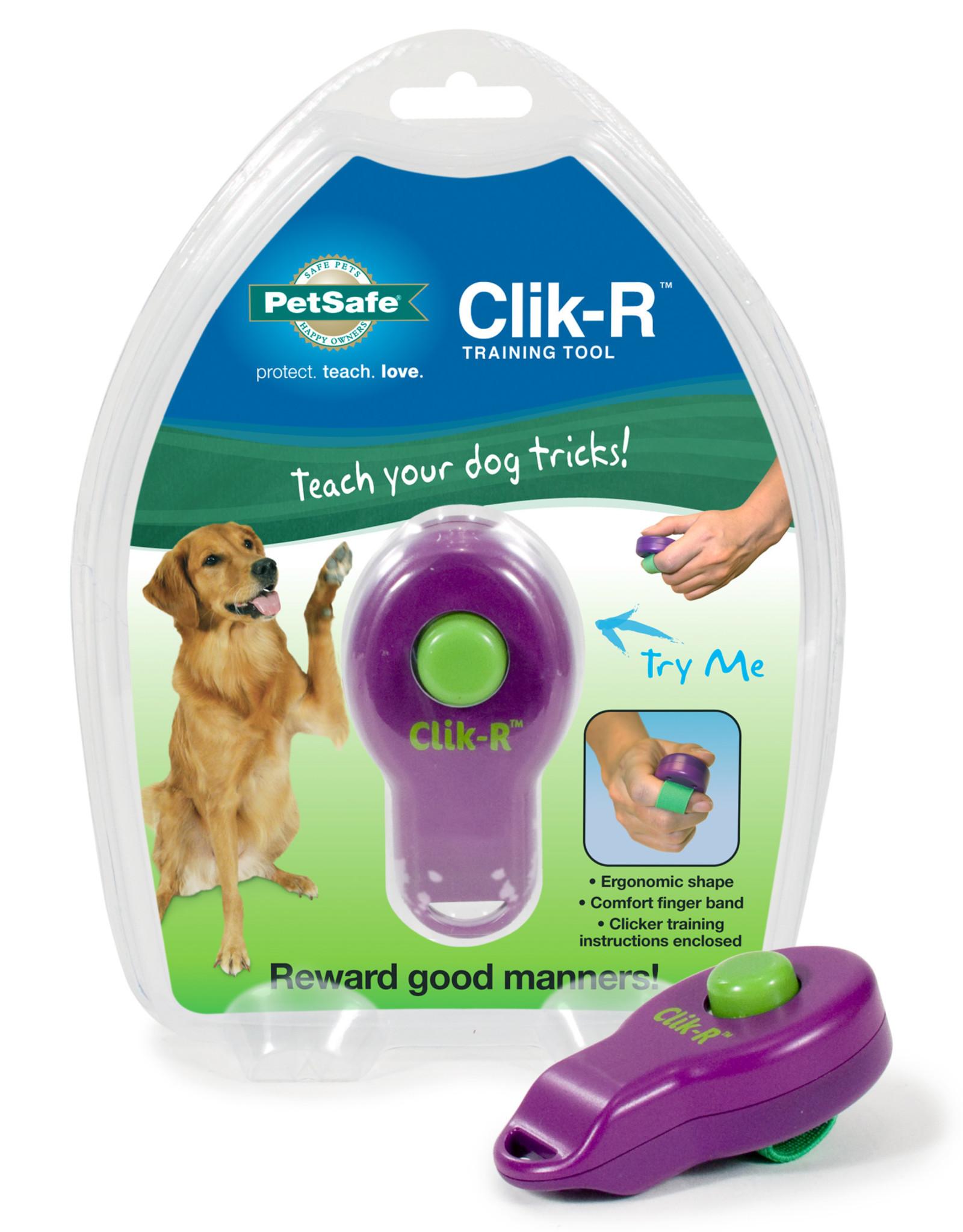 PetSafe Clik-r with Ring