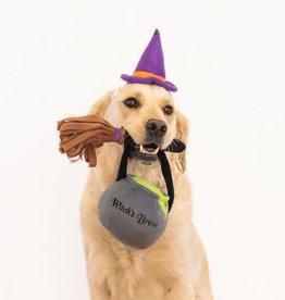 ZippyPaws Halloween Costume Kit - Witch