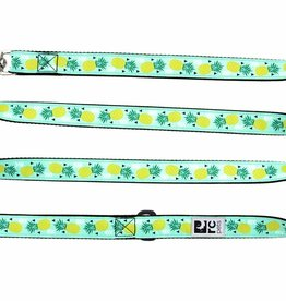 RC Pets Leash 6ft 3/4in
