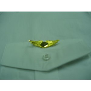 #881 GOLD WING PIN FEATHERED