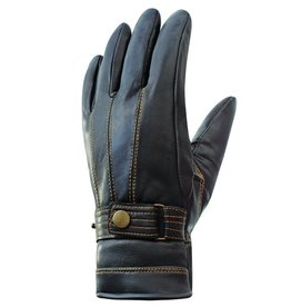 Auclair Auclair 6C115 Mitch Paris Gloves