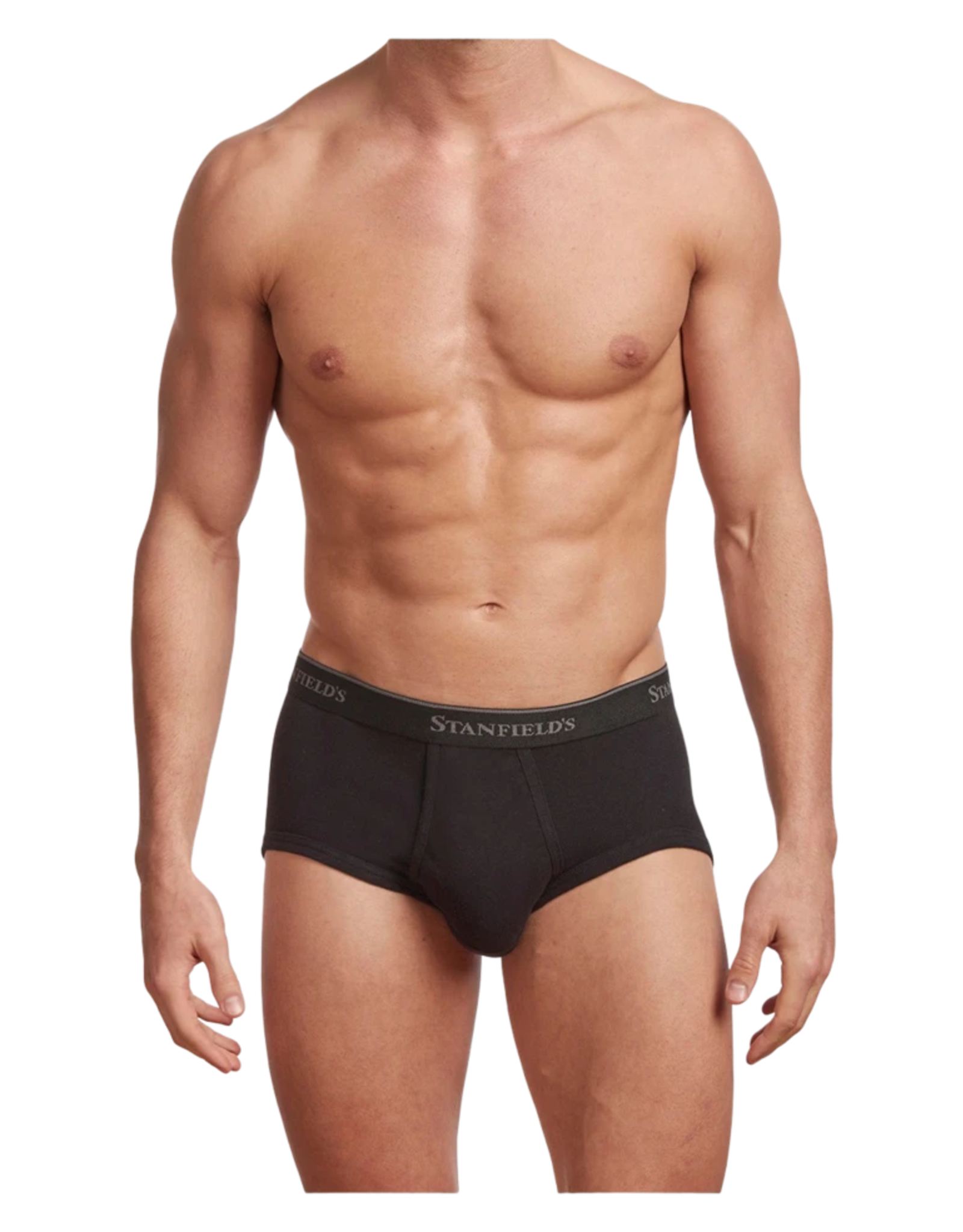 Stanfields Stanfields 2503 3-Pack Brief - 3 Colors