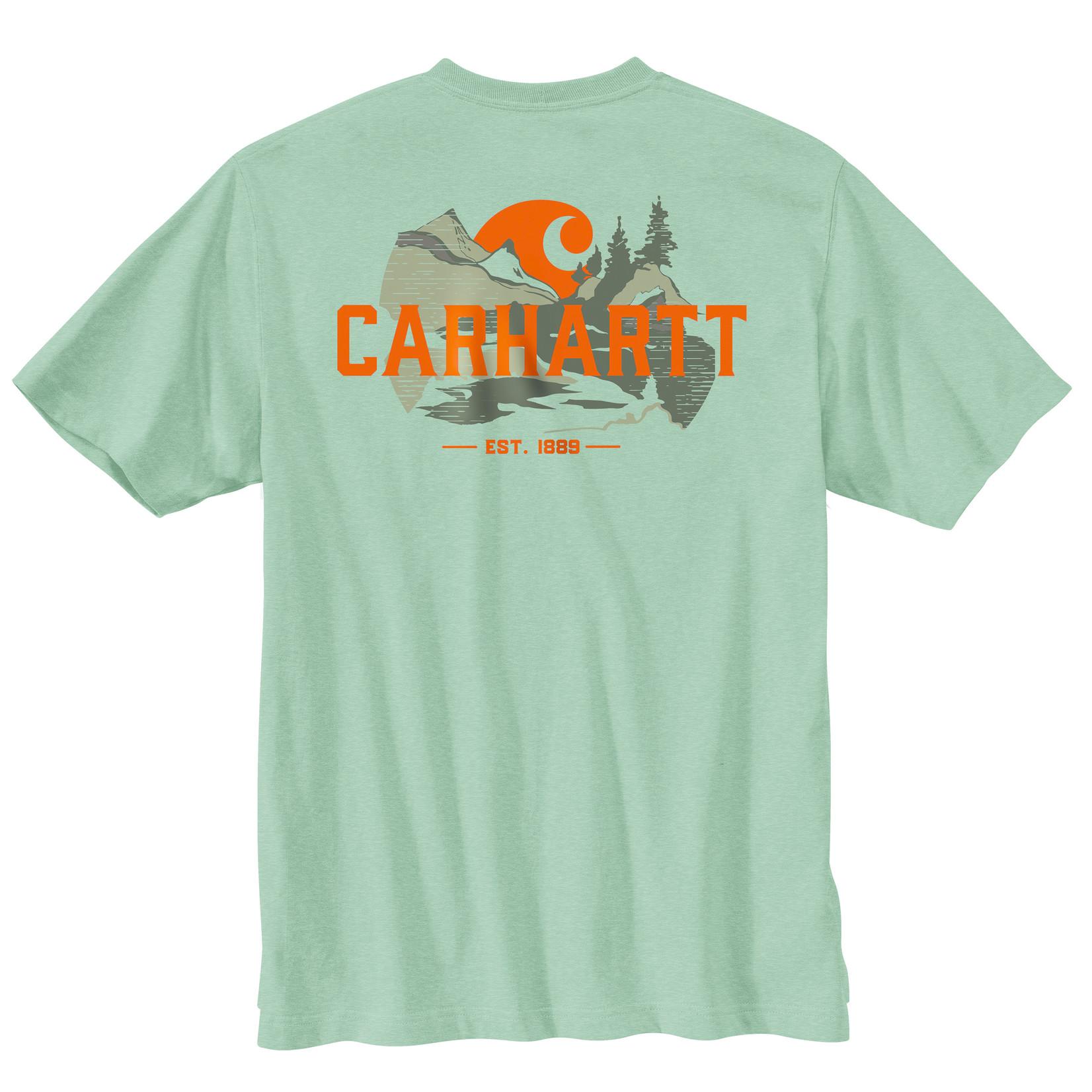 Carhartt Carhartt 104615 Relaxed Fit HvyWght SS Pkt Graphic T