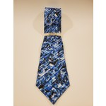Serica 212607 Printed Patterned Silk Tie