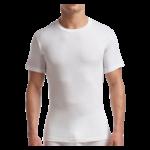Stanfields Stanfields Men's TALL Crewneck T-Shirt