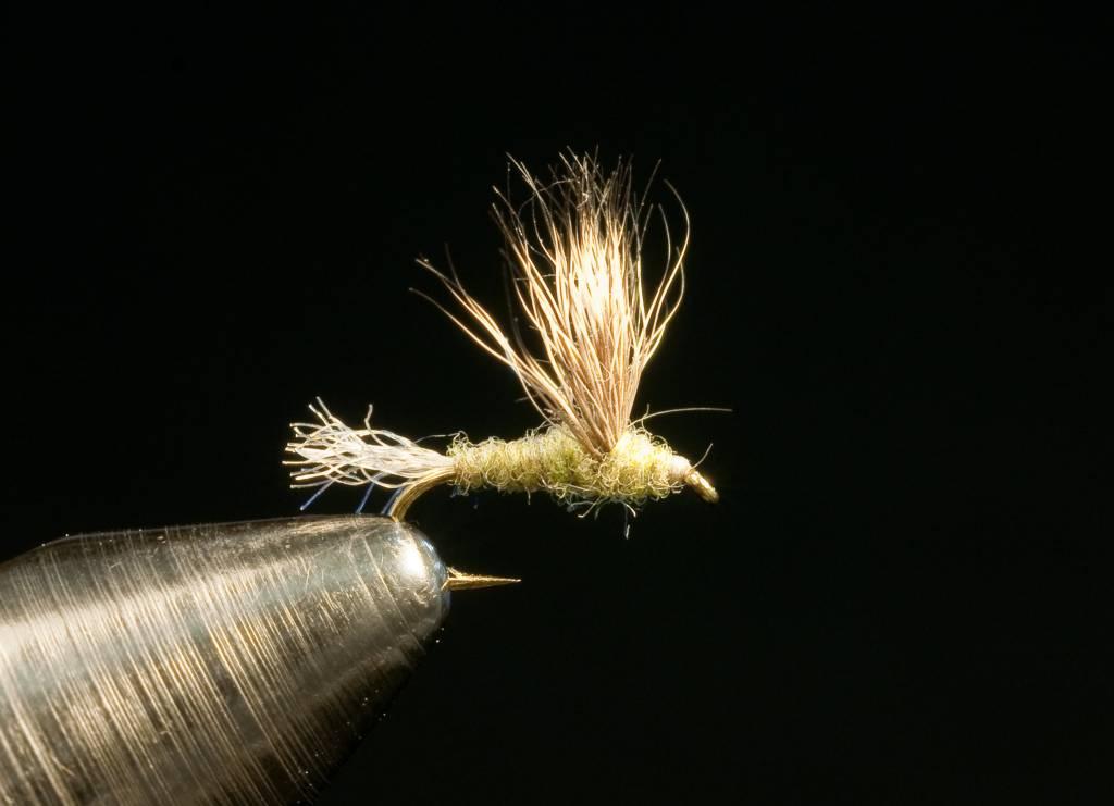 Mayflies Sparkle Dun